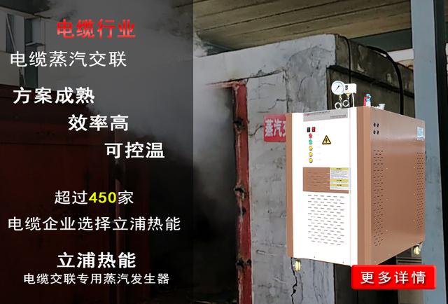 电缆行业专用蒸汽发生器