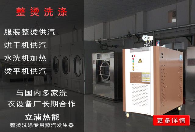 服装整烫洗涤专用蒸汽发生器