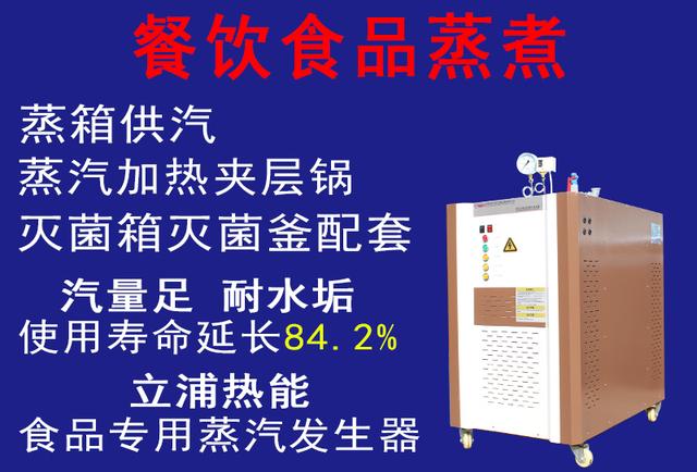 餐饮食品蒸煮专用蒸汽发生器.jpg