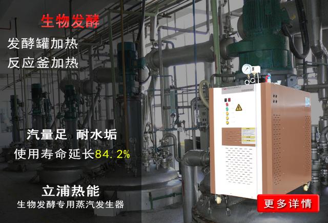 生物发酵专用蒸汽发生器