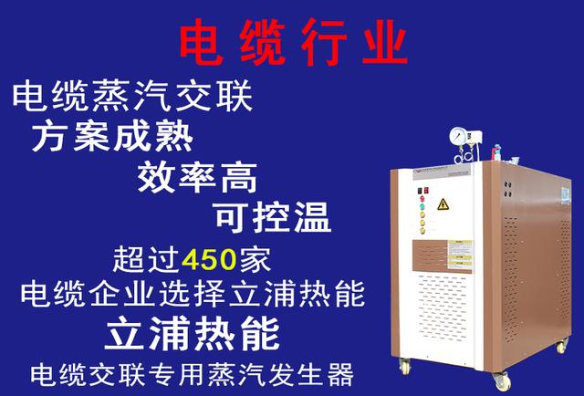 电缆行业专用蒸汽发生器.jpg