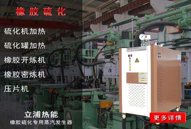 橡胶硫化专用蒸汽发生器